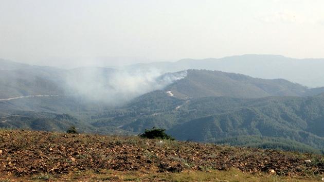 Suriye sınırındaki orman yangını 1 hafta sürdü