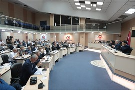 Büyükşehir Meclisi'nden Barış Pınarı Harekatı'na destek