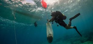 Ege adasındaki Kasos adasında üç eski gemi enkazı bulundu