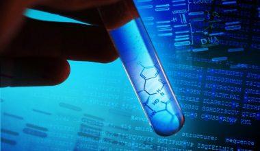 DNA YASAL TEST VE ÖZEL TEST ARASINDAKİ FARK NEDİR?