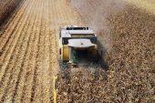 Tarım Ürünleri Üretici Fiyat Endeksinde Artış Yaşandı
