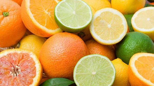 Türk turunçgili Brezilya'da tanıtılacak