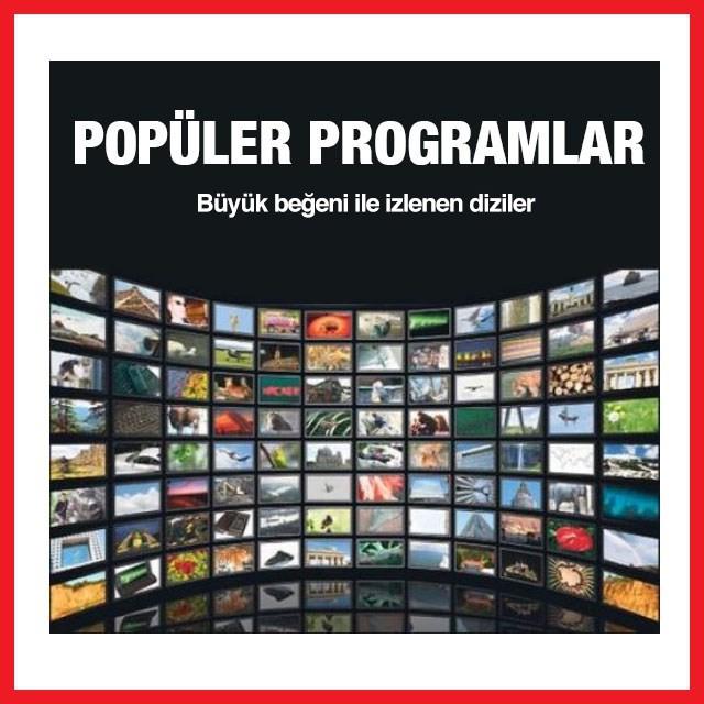 Televizyon Reklam Ajansı