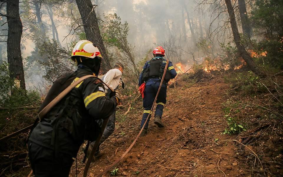 Ateş, başkent yakınındaki adadaki Yunan çam ormanını yakar